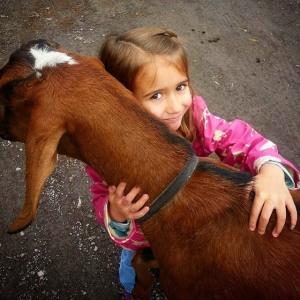 The Catskill Animal Society- photo from Facebook
